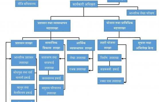 संगठनात्मक संरचना